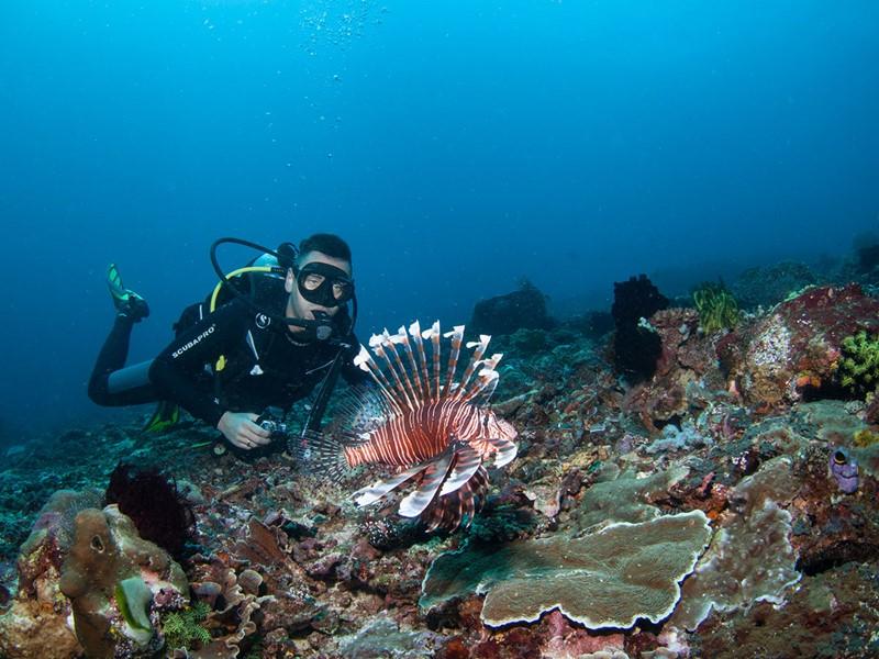Un séjour à Candidasa est l'occasion pour les plongeurs d'explorer des fonds marins d'une richesse exceptionnelle