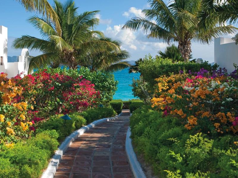 Le jardin luxuriant