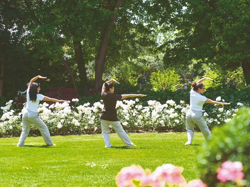 Yoga dans les jardins fleuris