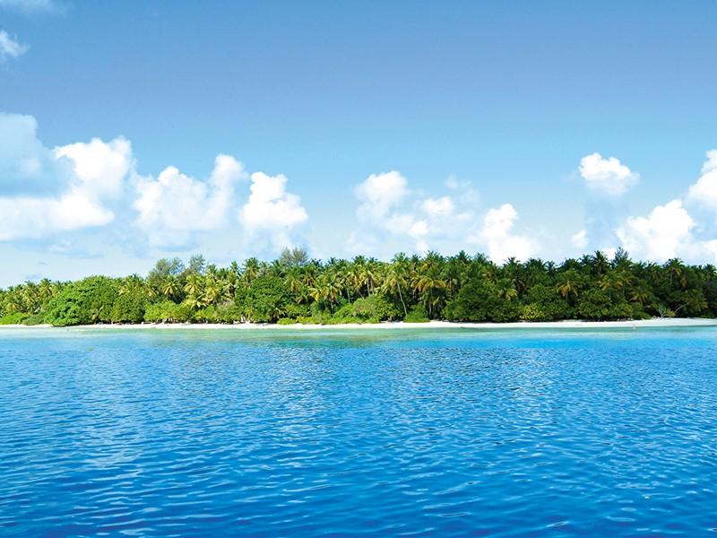 Une végétation abondante et de belles plages