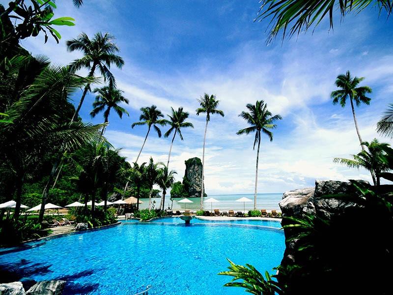 La piscine de l'hôtel offrant une vue sur la végétation et la mer