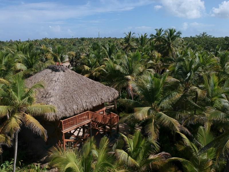 L'hôtel est immergé dans la nature luxuriante