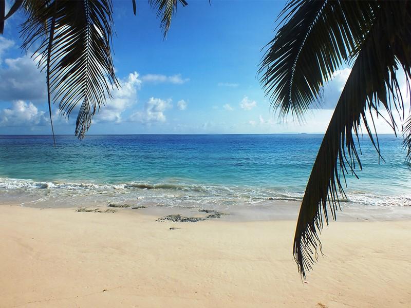 La magnifique sable du Carana à Mahé