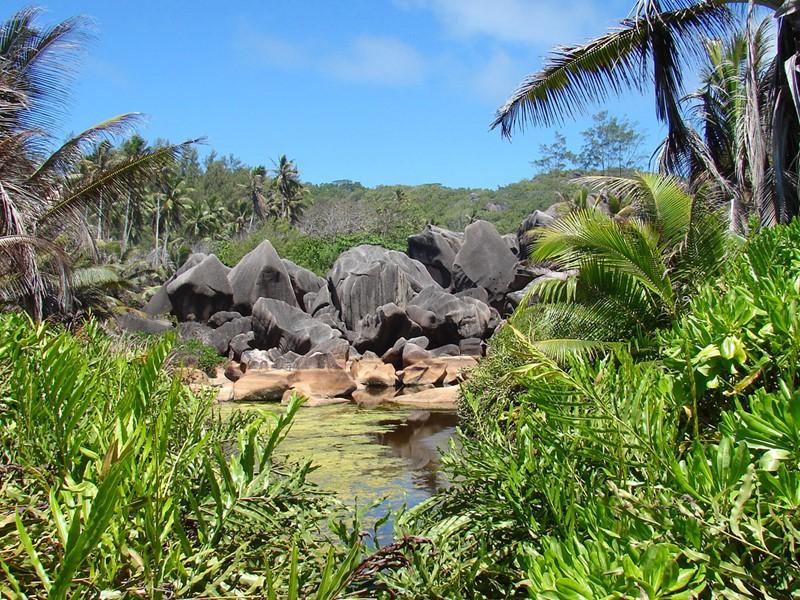 Partez à la découverte des Seychelles