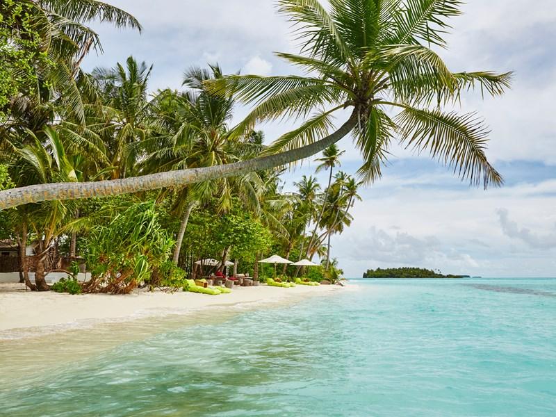 Profitez d'un moment de détente sur l'île privée de Lavadhoo