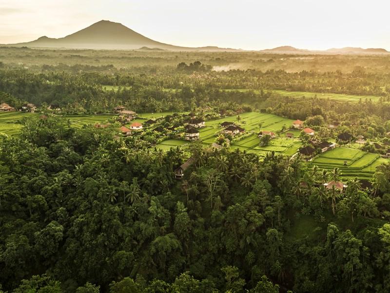 Bali est caractérisée par une végétation luxuriante et des paysages verdoyants