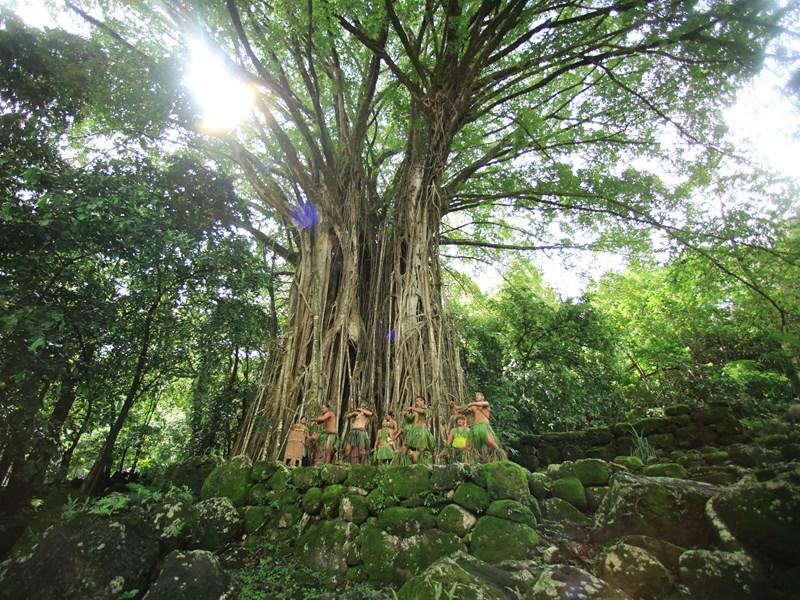 Découvrez la culture et les traditions des Marquises à Nuku Hiva