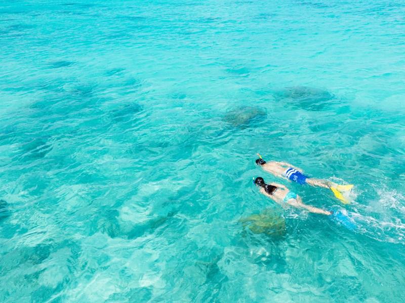 Explorez les fonds marins lors de votre voyage