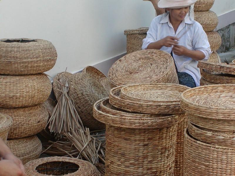 Surprenante visite dans un atelier de transformation de la jacinthe d'eau en paniers