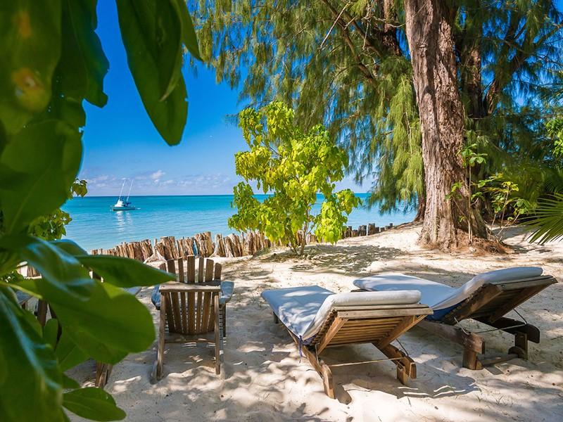 Détente sur la plage du Denis Private Island dans un cadre naturel