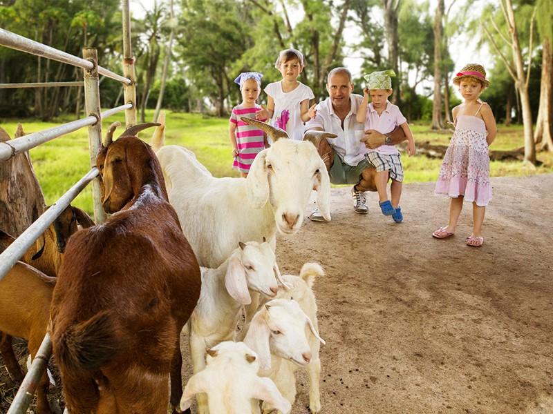 La ferme du Denis Private Island situé aux Seychelles