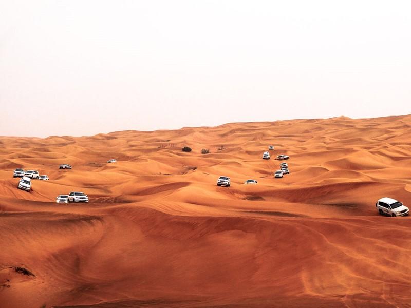 Explorez le désert de Liwa