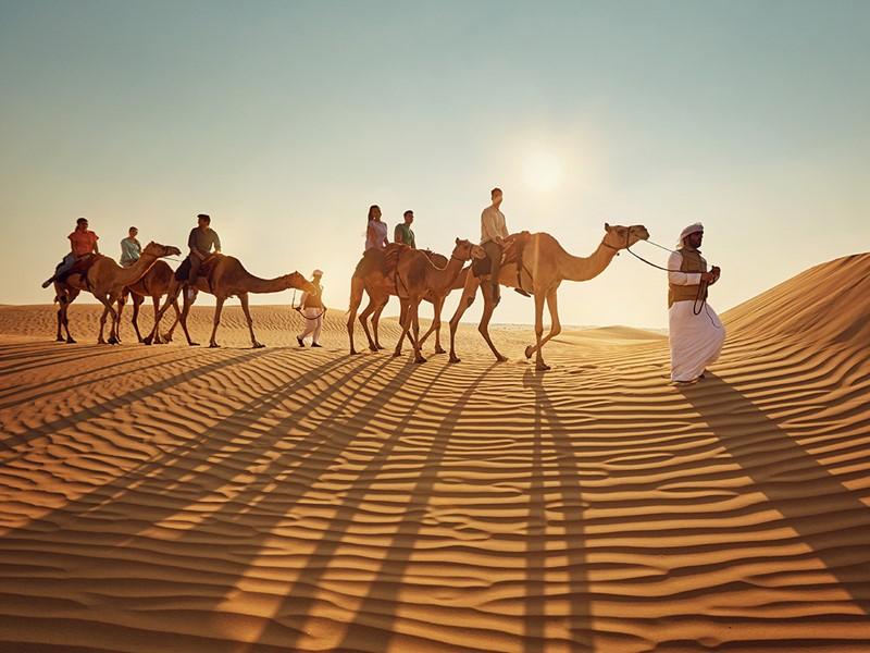 Balade à dos de chameau entre les dunes