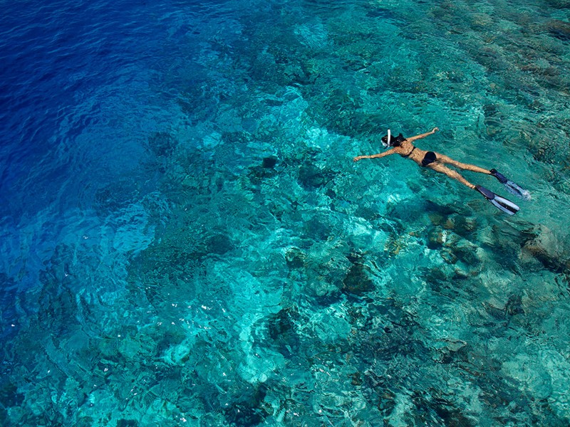 Idéale pour les amateurs de snorkeling