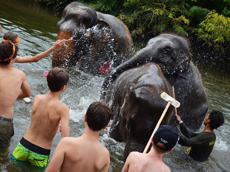 Bain des éléphants dans la belle rivière Kwai Yai