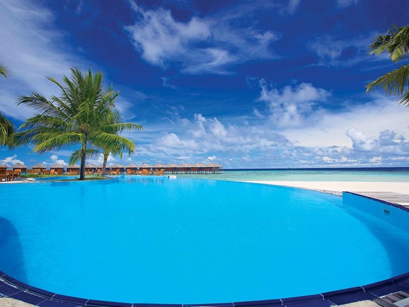 La magnifique piscine