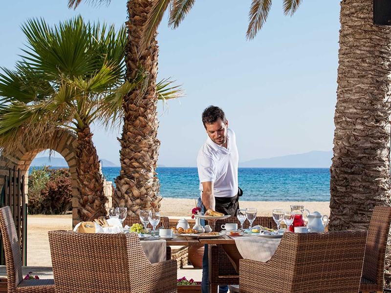 Petit-déjeuner à l'ombre des palmiers