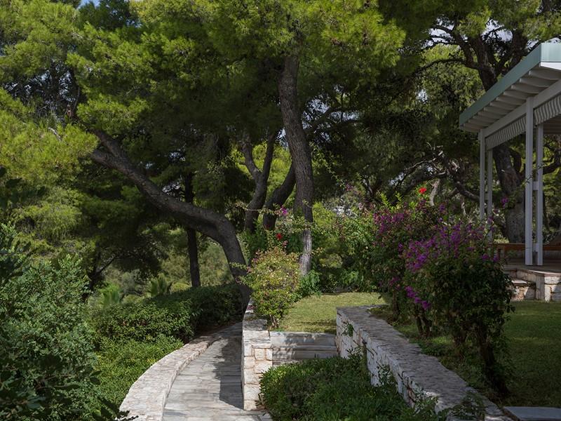Le Four Seasons Astir Palace est niché au cœur des pins maritimes
