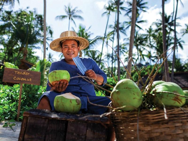 Sirotez de l'eau de coco fraîche au Four Seasons Resort