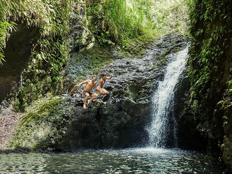Partez à la découverte des fameuses cascade d'Hawaii