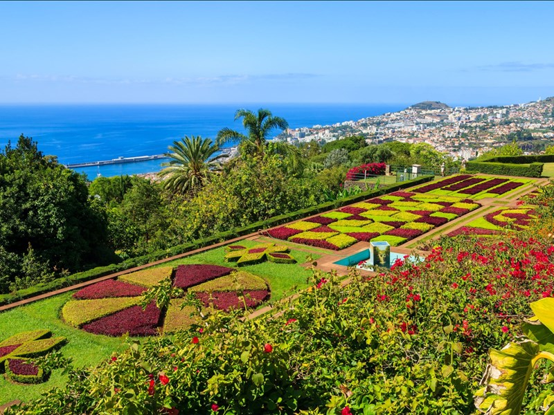 Le jardin botanique et sa multitude d'espèces végétales qui surplombent l'océan