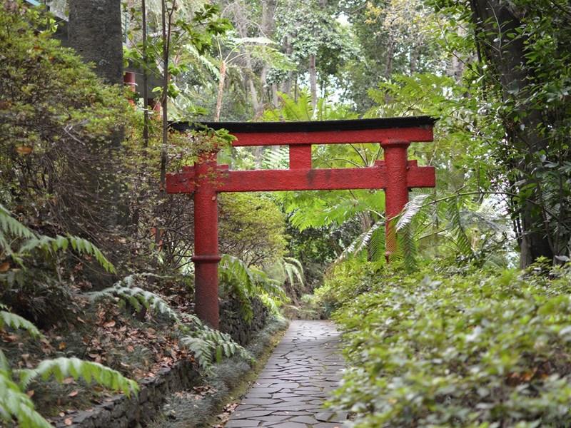 Le jardin tropical abrite une flore extraordinaire, celle-là même qui a valu à Madère le surnom d'île aux fleurs