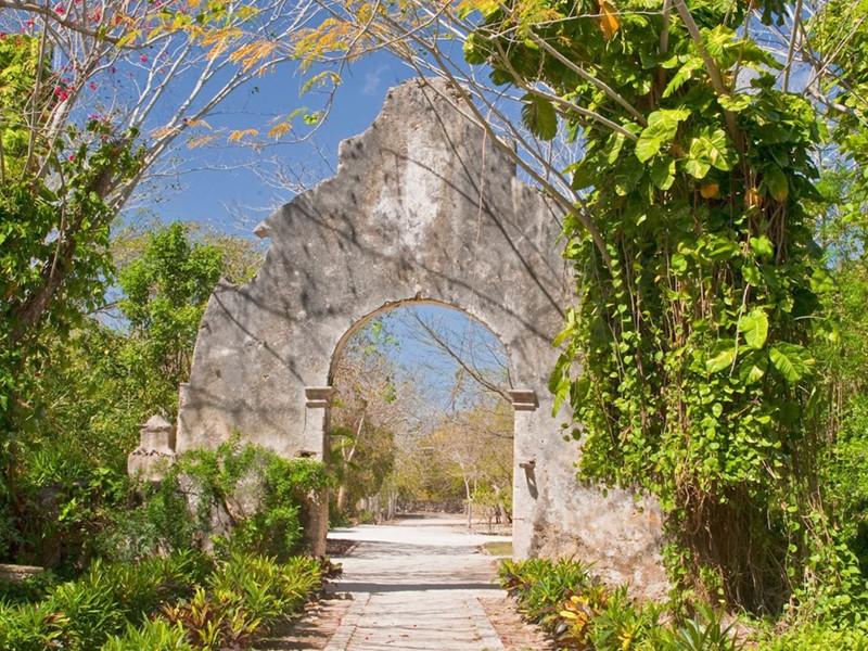 Découvrez la végétation luxuriante du vaste jardin de l'Hacienda San Jose