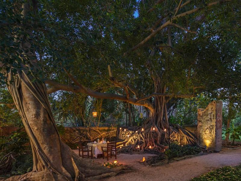 Dîner romantique éclairé à la bougie à l'Hacienda San Jose