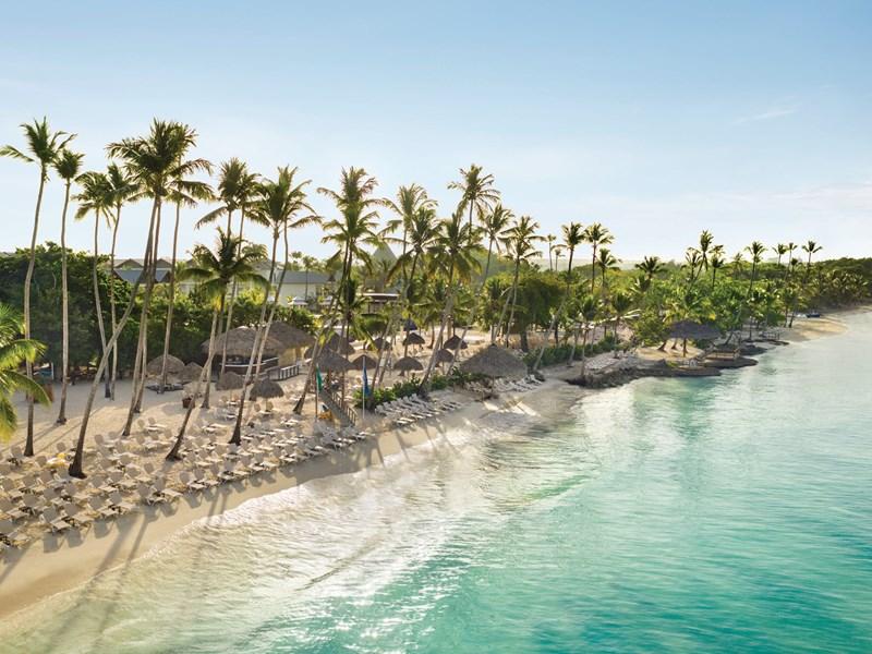 Des palmiers, du sable blanc, du soleil et l'océan ..