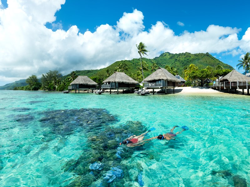 Snorkeling dans les eaux cristallines