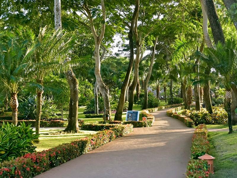 L'hôtel est niché dans un grand parc tropical