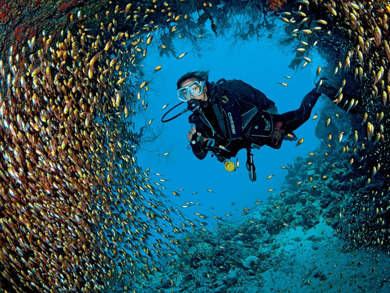 Explorez les fonds marins de l'atoll de Lhaviyani