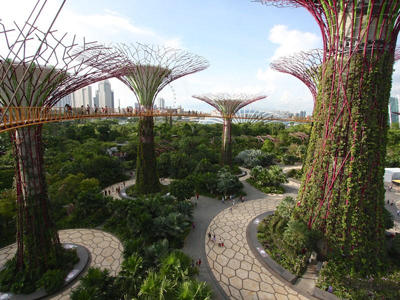 Visite des parcs exubérants de Singapour