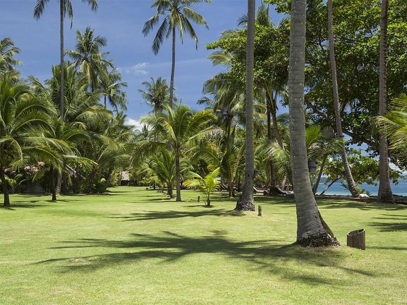 Le jardin tropical de l'hôtel