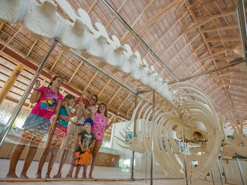 Le centre écologique du Kuramathi Maldives