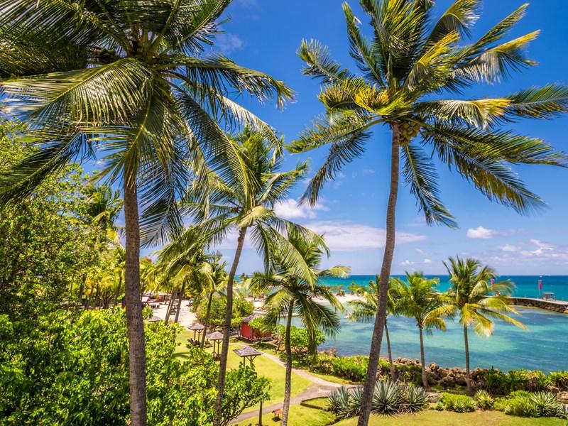 Un petit Paradis aux allures tropicales