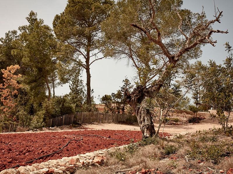 La Granja offre aux voyageurs un retour aux sources inespéré