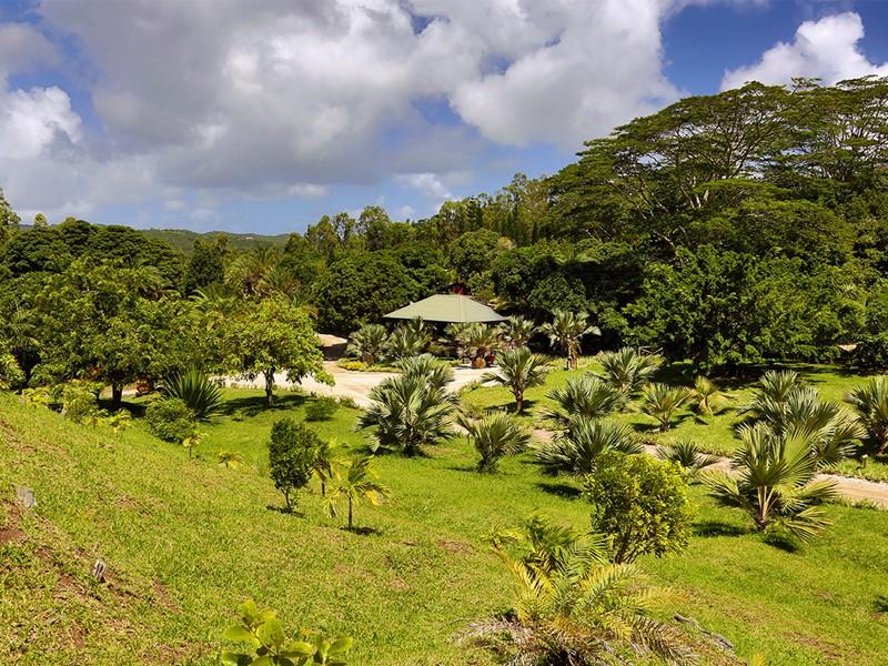 Les jardins arborés du Lakaz Chamarel