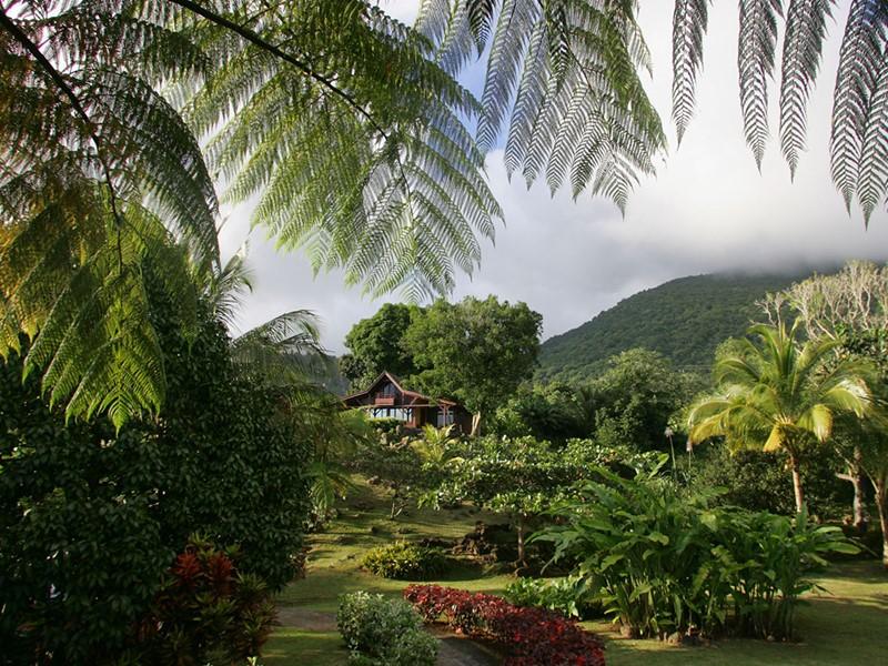 Vue du jardin de l'hôtel Le Jardin de Malanga