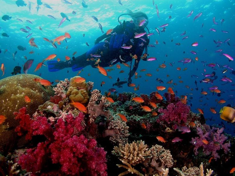 Profitez des activités nautiques sur l'île de Phu Quoc, dans un cadre édenique