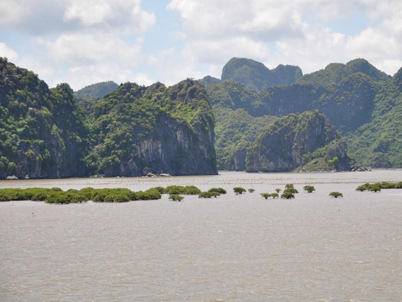Les paysages pittoresques de la baie de Lan Ha