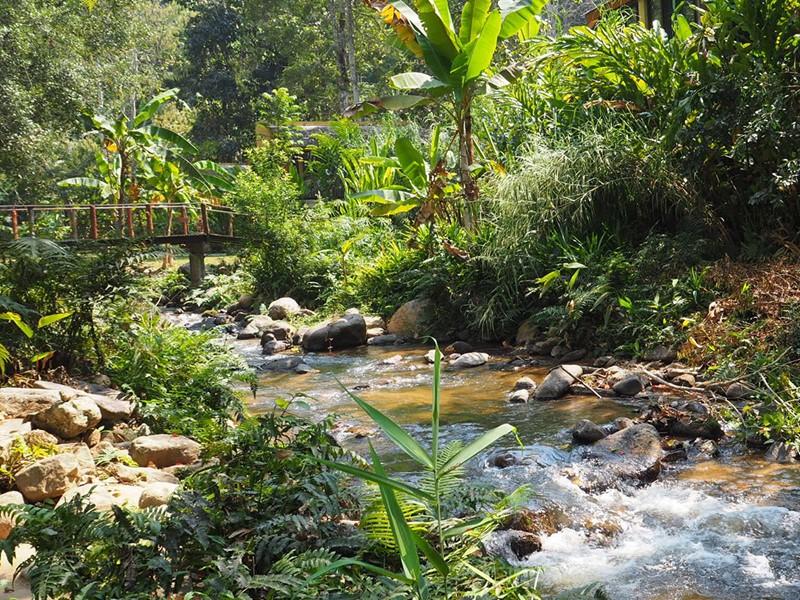 Mae Kampong, un charmant village de montagne situé au nord de Chiang Ma