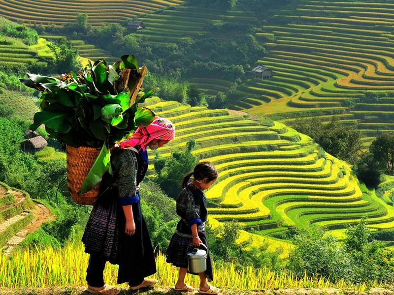 Visite du village de Lao Chai de la minorité Hmong Noirs