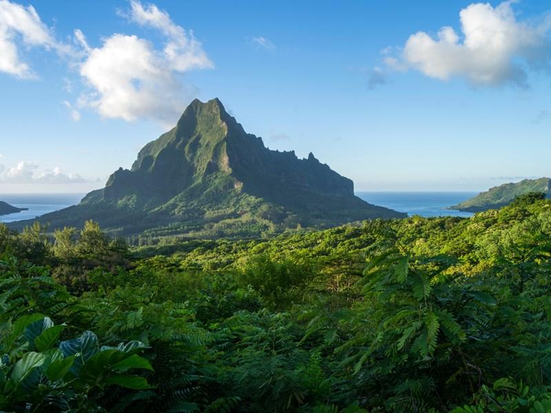 Une île à la beauté sauvage