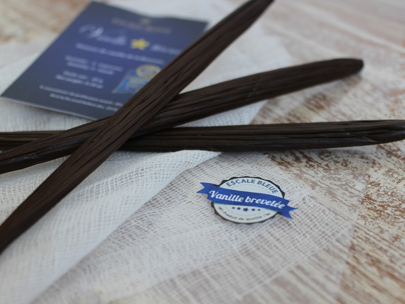 Découvrez la culture de vanille à l'Escale Bleue