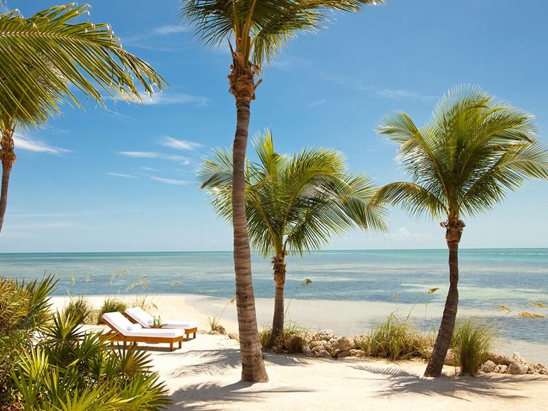 Profitez de la plage paradisiaque du Little Palm Island