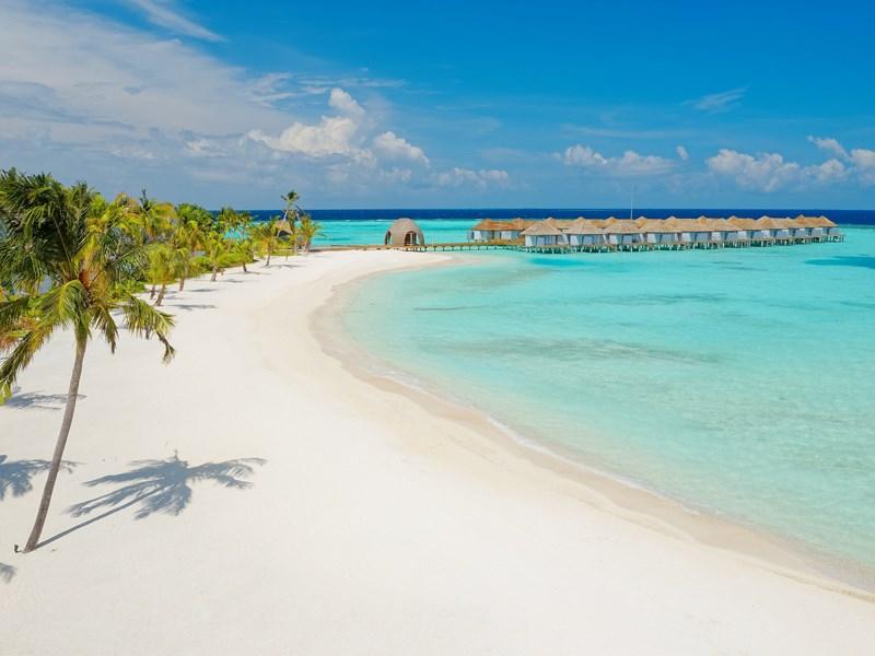 L'hôtel bénéficie d'une sublime plage de sable blanc