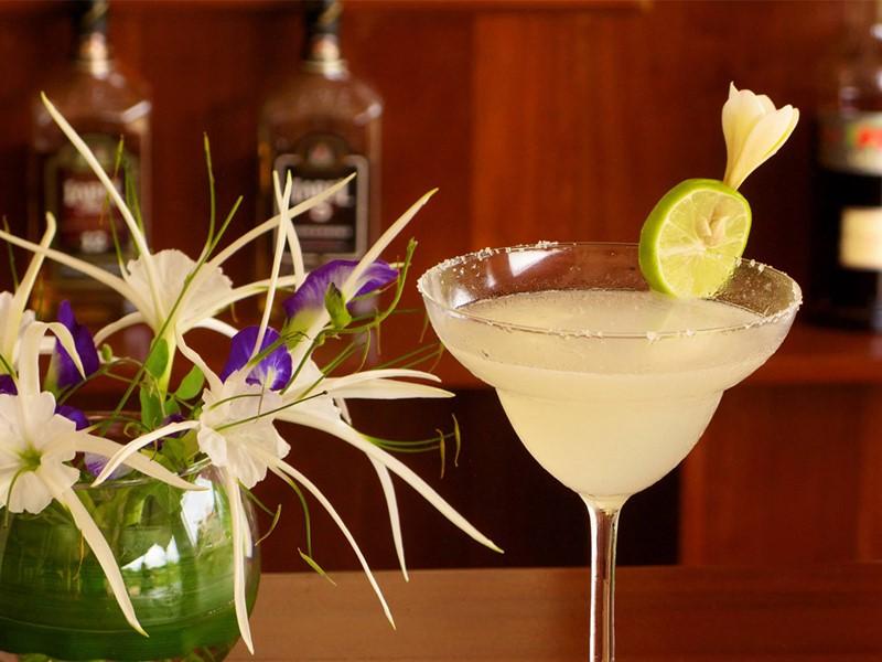 Dégustez des cocktails délicieux