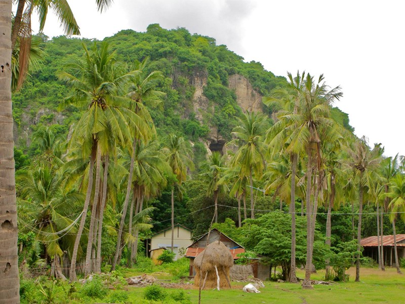 Découvrez la région de Battambang