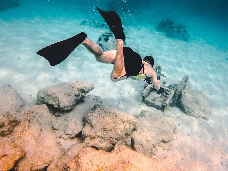 Explorez les exceptionnels fonds marins de l'île